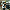 Elazığspor deplasmana 20 futbolcuyla gitti
